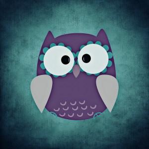owl-700788_640